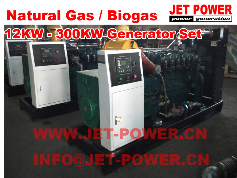 Gas generator 12kw to 300kw Natural Gas Biogas Generator Set