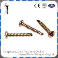 Galvanized self-drilling screws truss head wafer head self drilling screw