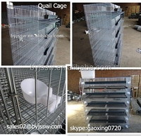 Poultry Cages of Quail