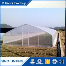 Professional poly tunnel cheap greenhouse plastic for cucumber