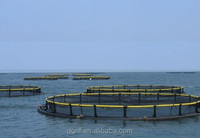 HDPE high quality aquaculture plastic flaoting pontoon fishing farming cage equipment for tilapia