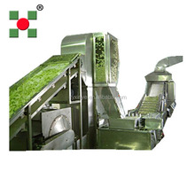 dried mango/strawberry fruit processing machine