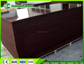 Shandong WBP/MR glue combi brown/black Film faced plywood