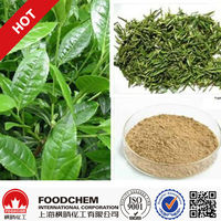 100% Pure Natural Solvent Extraction Green Tea Extract