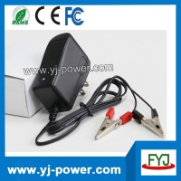 12v 24v 36v 48v rohs lead acid car battery charger for lead acid battery