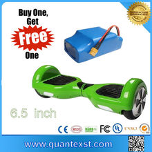 One Wheel Mini Folding Scooter with Bluuetooth +Real Capacity Battery Hoverboard Motherboard for Sale