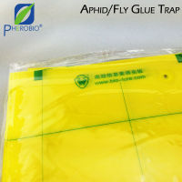 Insect Glue Trap (With Pheromone Coating)