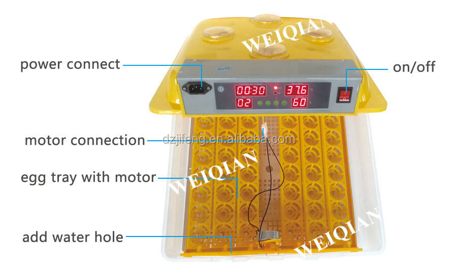 Best Price Hot Sale Automatic Mini Egg Incubator Buy