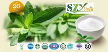 stevia extract China factory supplier powder form steviol glycoside SG90%