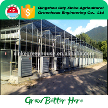 China cheap Safety Glass Orangery greenhouse With Long-term Technical Support