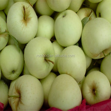 Chinese Fresh Fruit Golden Delicious Apple 138-198 Size Export To India