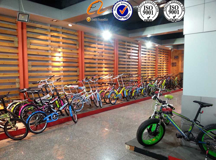 "CITY BIKE / 24"" city bike / 24"" city bicycle / 2 wheel / city bike for lady / beautiful city bike / cheap China bike"