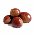 2017 chestnuts