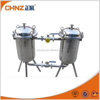 Simple Duplex Stainless Steel Filter
