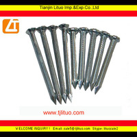 low price galvanized concrete steel nail for building material