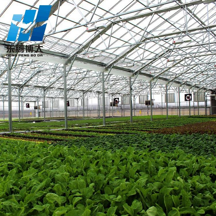 industrial polytunnel greenhouse