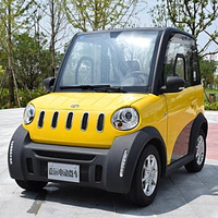 Adult Driving For Sale Mini Electric