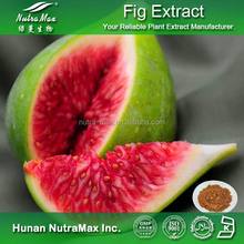 China Supplier Free samples Ficus Carica Fruit Extract, Ficus Carica Fruit Extract Powder 4:1 5:1 10:1