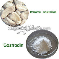 Free Sample Gastrodin Powder 98% Gastrodia Tuber Extract