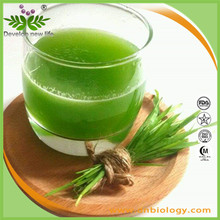 High quality Wheatgrass Extract 4:1,5:1,10:1 for bodybuilding supplements