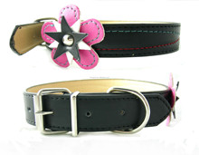 flower dog collars pet collars,collar