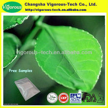 green tea extract/bio green tea extract/green tea extract powder