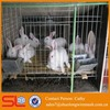 luxury aluminum rabbit cage Commercial rabbit cage in Kenya farm
