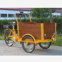 3 wheel tricycle motor cargo bike bakfiets for sale