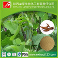Manufacturer Sales Pueraria Mirifica Extract Powder