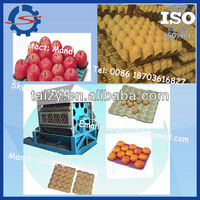 Best sale ! India selling paper egg tray machine/ paper egg tray machine / egg tray machine with low price 0086 1870616827