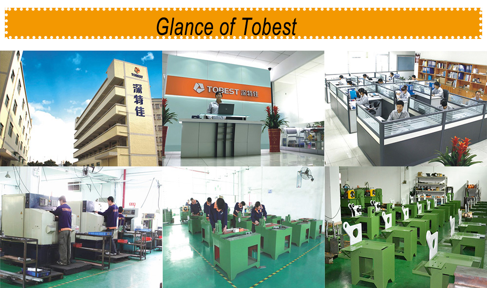 TOBEST screw rolling machine nut bolt manufacturing machinery price