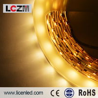 Hot sale 2014 made in China PU Glue 24v 12 volt 60LEDS/M IP65 flexible led strip 3528 blue 300led CE&ROHS 2years warranty