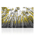 3 Panels Custom Landscape Photo Print Forest Scenery Canvas Art Prints Framed and Stretched Wholesale Canvas Art Decor