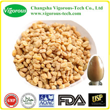 100% Natural Fenugreek Extract/Fenugreek Extract powder/fenugreek powder extract