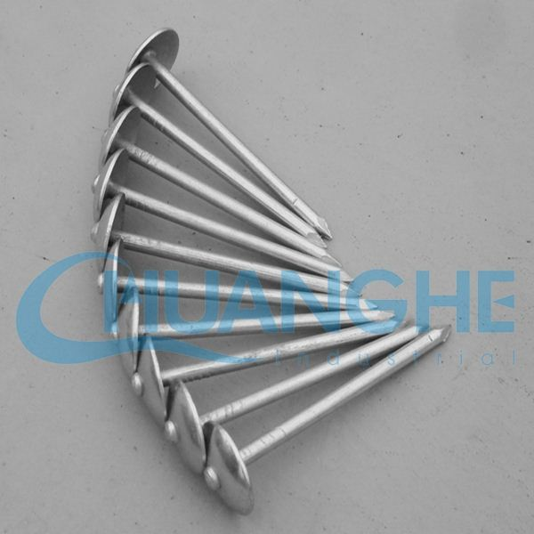 alibaba china roofing nails with plain shank/twisted sank