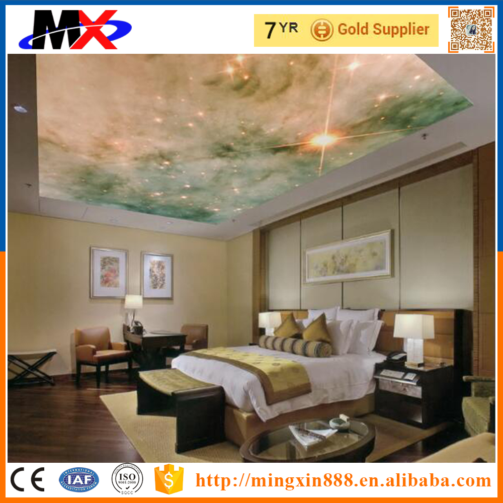 New product 2016 3d ceiling designs with best quality and low price