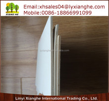 Italian Poplar Plywood,China Poplar Plywood