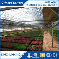 SINOLINK Hydroponic Systems With Film Hydroponics