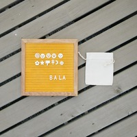 Hot Halloween Felt Letter Board With