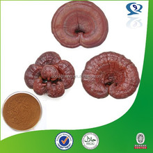 100% natural and pure glossy lucid ganoderma extract powder