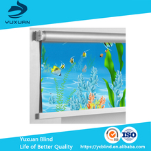 Solar shade Color coated Roller Blinds