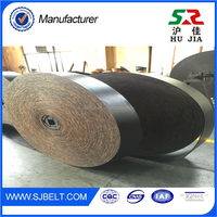 Cement Plant Nylon Moulded Edge Used Nylon Conveyor Belt