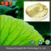 GMP Standard Herbal Extract Plant Extract Powder Louts Leaf Extract