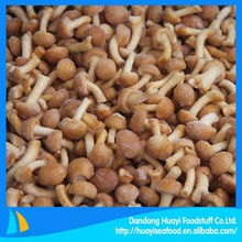 our vegetable factory mainly export frozen nameko mushroom