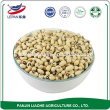 Hot Sellling Different Types Dried Pickled Red Beans Bulk Cowpea Seeds