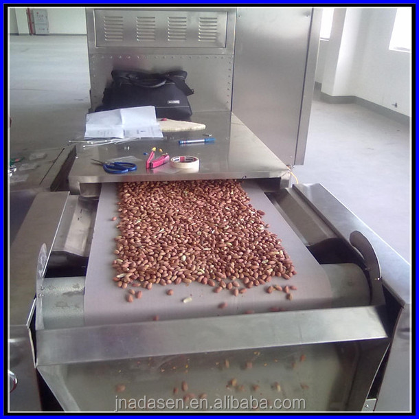Seeds/nuts belt type baking/roasting oven