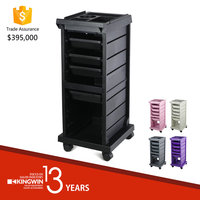 Black Economical Hair Salon Trolley *Not available for the USA market