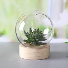 wholesale clear glass terrarium with wooden base