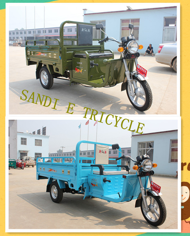 Cargo electric tricycles CE