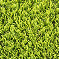 Suntex hot selling synthetic landscaping grass lawn